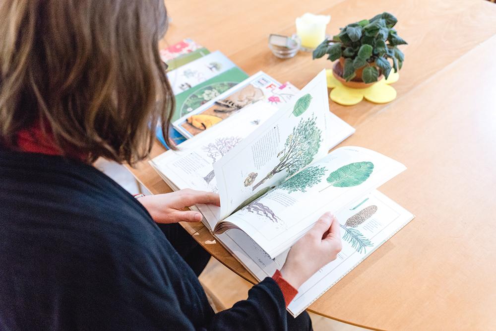 Montessori Ausbildung Schule 6-12 (12)