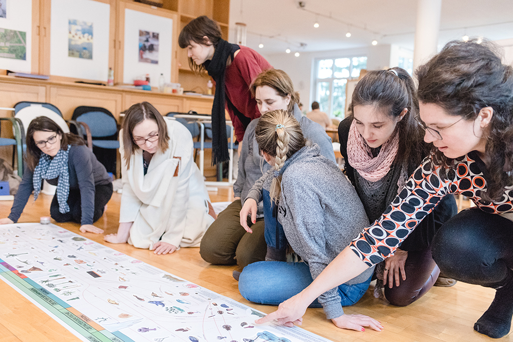 montessori schule ausbildung diplomlehrgang (5)